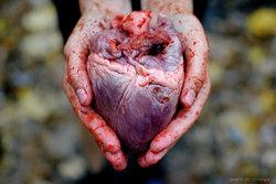 real heart-thumb-250x167