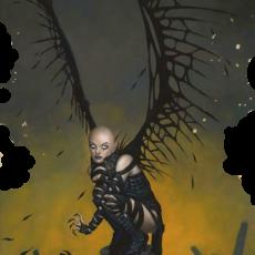 Die Suche nach dem goldenen Knochen (The Guardians)