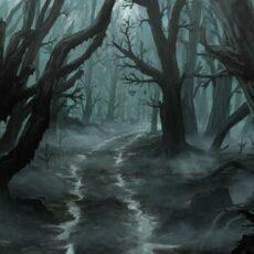 Düstere Begegnungen im Finsterwald (Shield of Light)